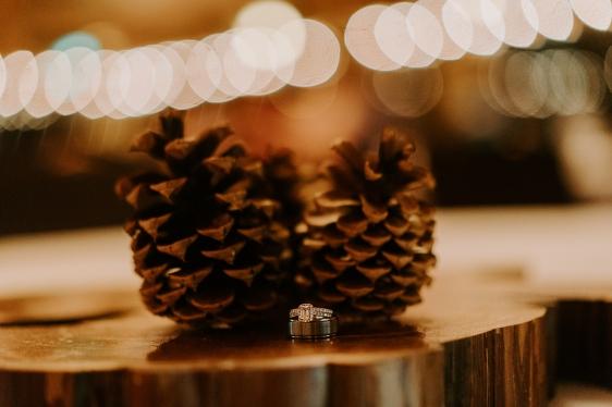 Christine_Marshall_Wedding_MegONeillPhotography__180505_1-4